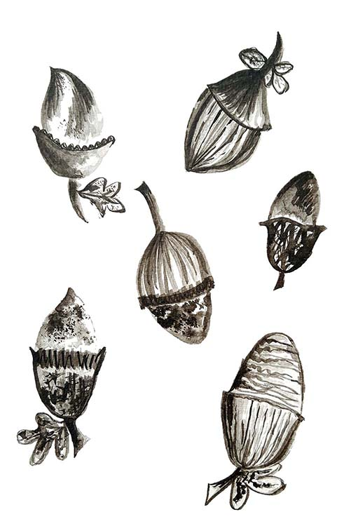 'ACORNS' surface pattern design motif in ink