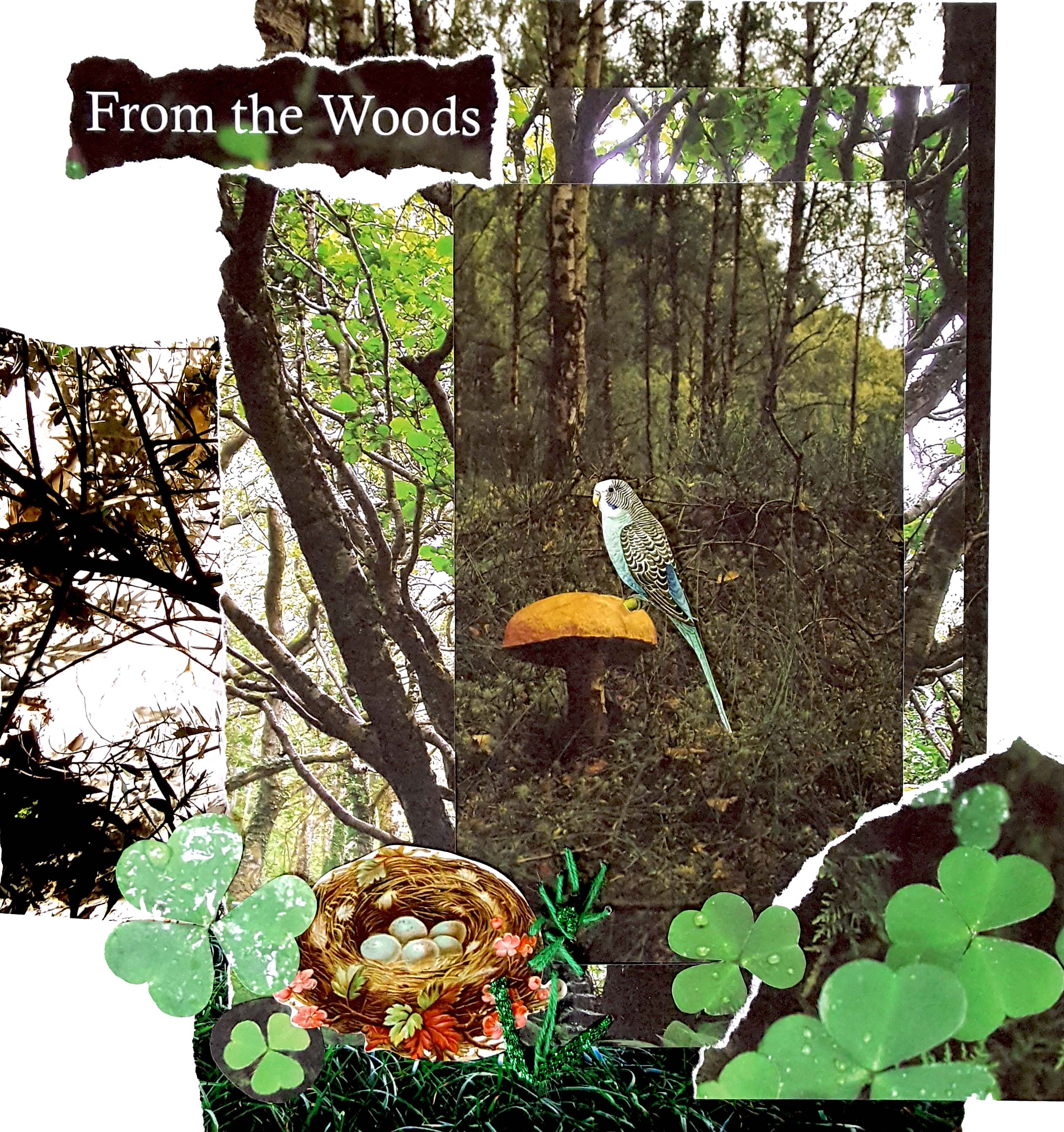 Into the Woods, Green collage, The Collage Club