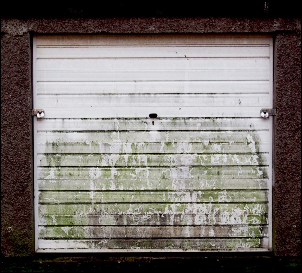 Mouldy Garage Door