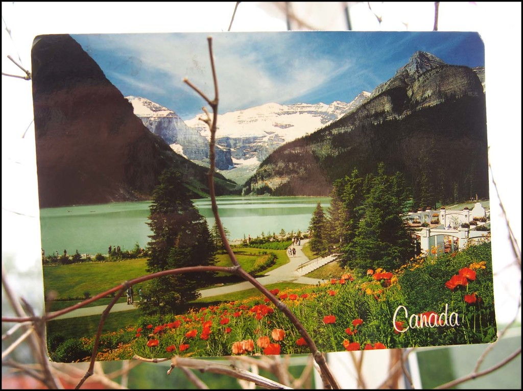 Vintage postcard from Canada