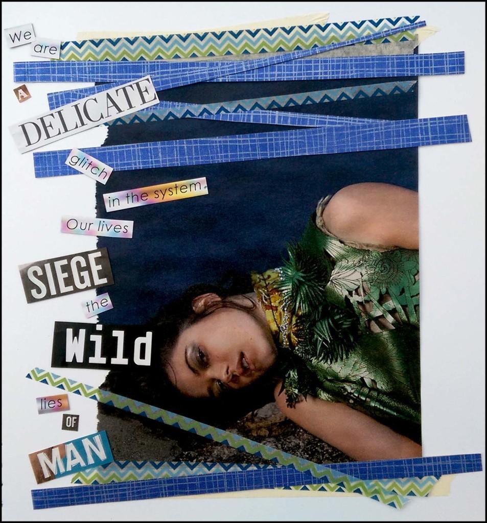 'Wild Lies' TEXT collage