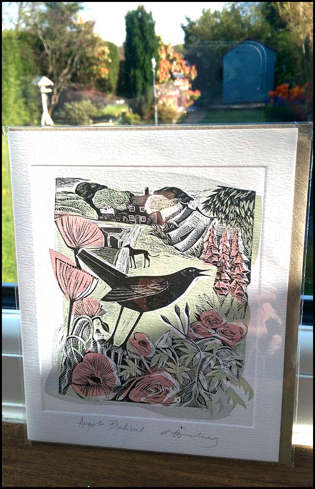 Blackbird lithograph print