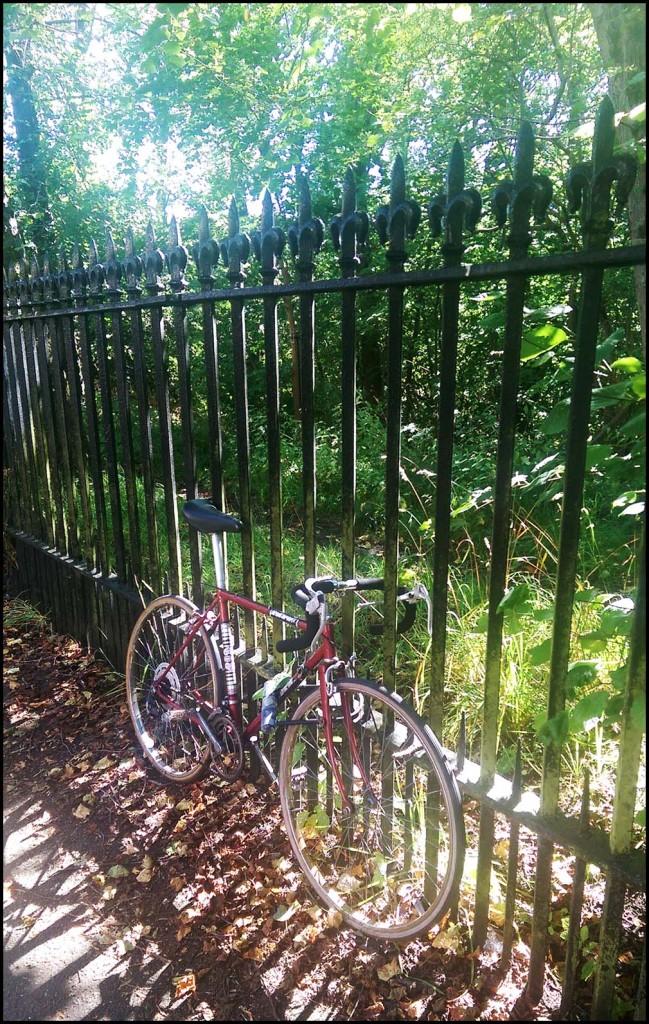 Bike in the (autumn) sunshine