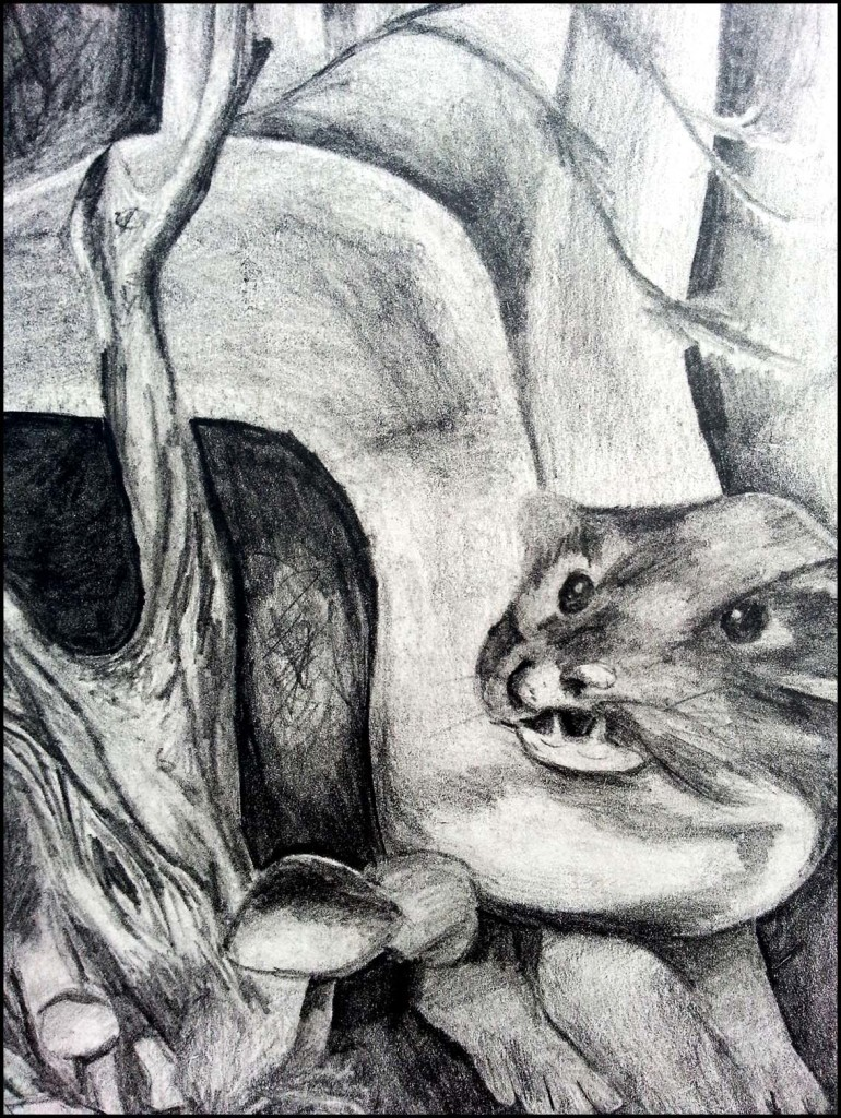 'Kine' book cover pencil drawing